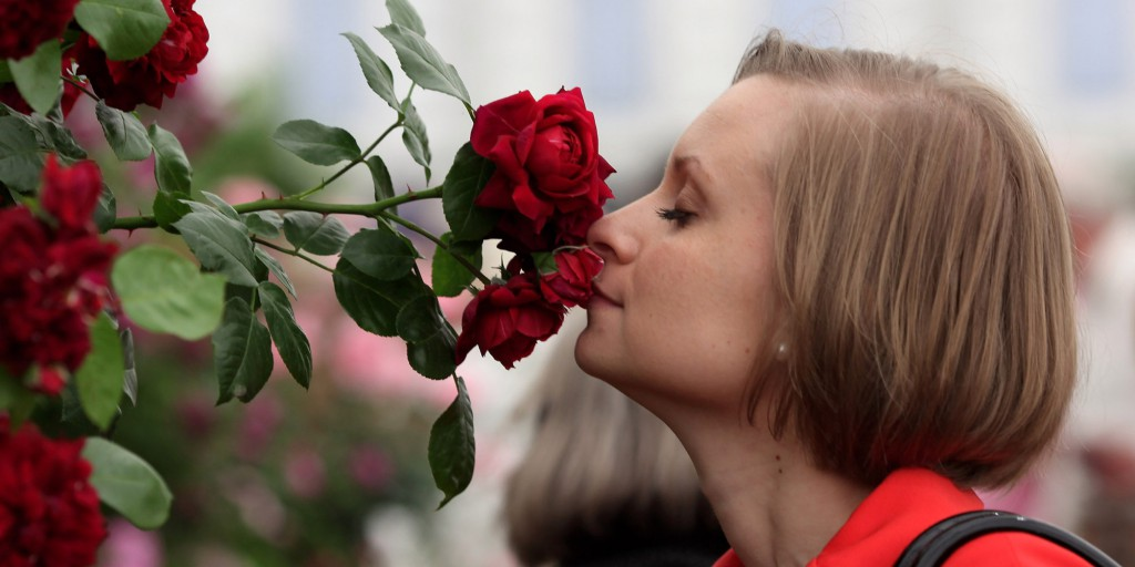 LONDON, ENGLAND - MAY 25: A woman smells a flower in the rose garden at the annual Chelsea flower show on May 25, 2010 in London, England. The Royal Horticultural Society flagship flower show has been held at the Royal Hospital in Chelsea since 1913. This year will be the 87th show here and was originally known as the Great Spring Show and was first held in Kensington in 1862. (Photo by Dan Kitwood/Getty Images)