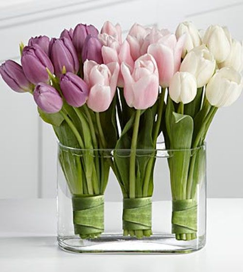 2016 03 15 - tulips