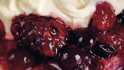 Bon Appetit Mixed Berry Tiramisu